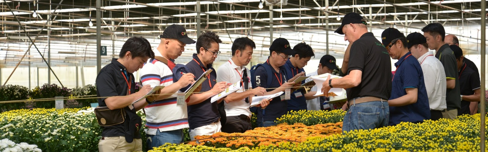 Press Release Dalat Hasfarm Flower Trials 2017 - 3rd Edition